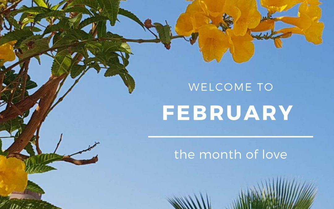 ? Welcome to February … the month of Love ?